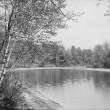 Thoreau's cove, Lake Walden, Concord, Mass.