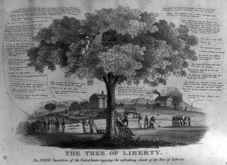 The free population of the United States enjoying the refreshing shade of the tree of liberty