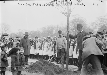 Planting of trees, Arbor Day, N.Y. Public School #4, 173rd St. & Fulton Ave., New York