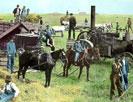 Threshing machine, Soper Post Office, North Dakota : first traction engine
