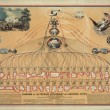 Featured Image: Diagram of the Federal Government & American Union