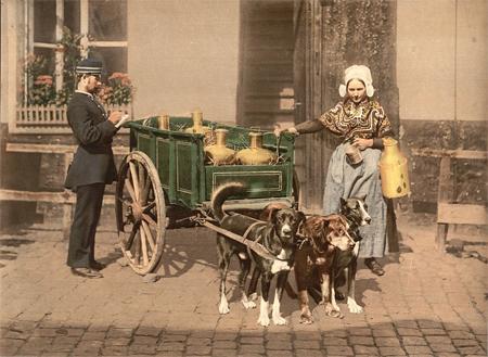 Flemish milk women, Antwerp, Belgium