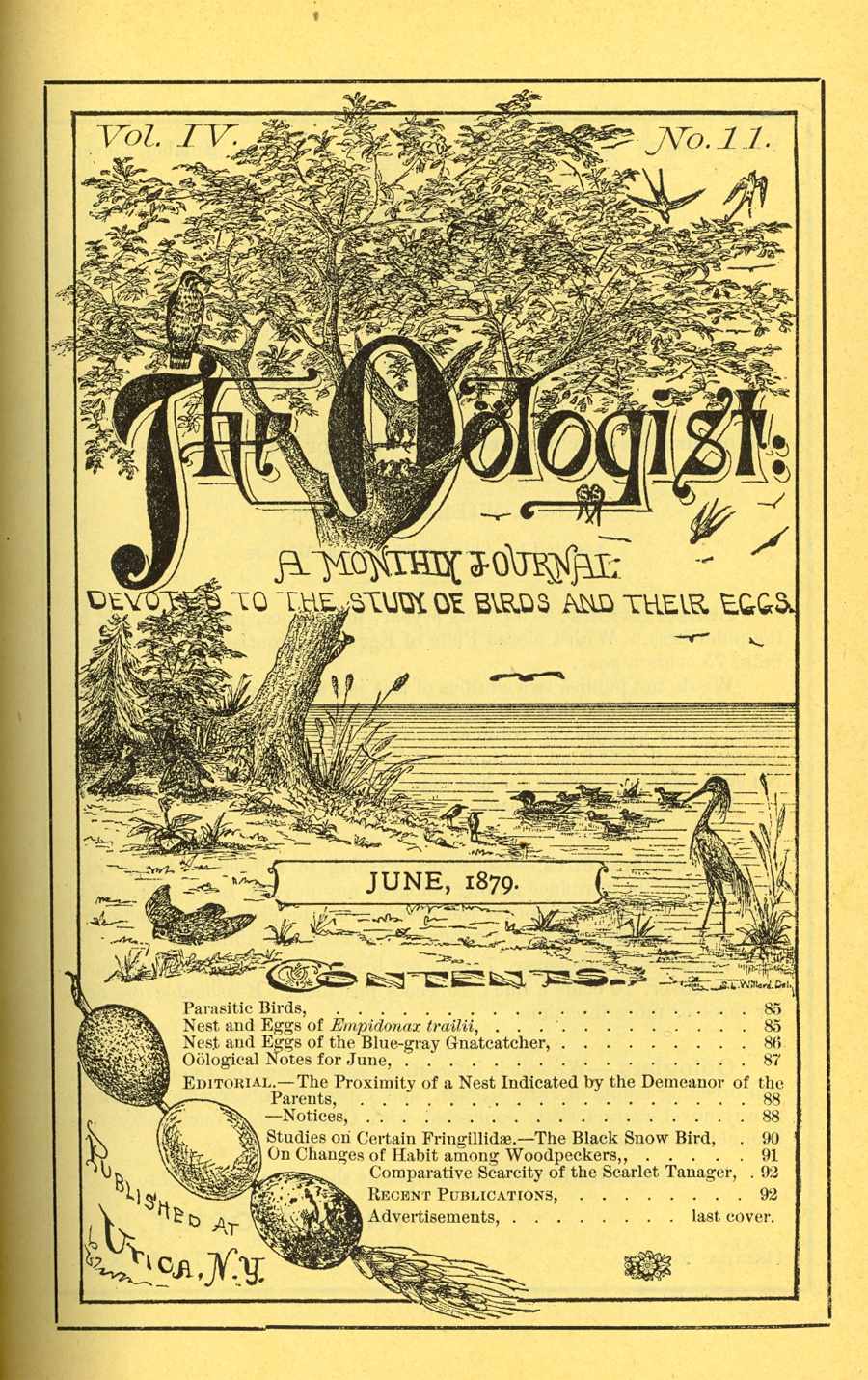 The Oologist