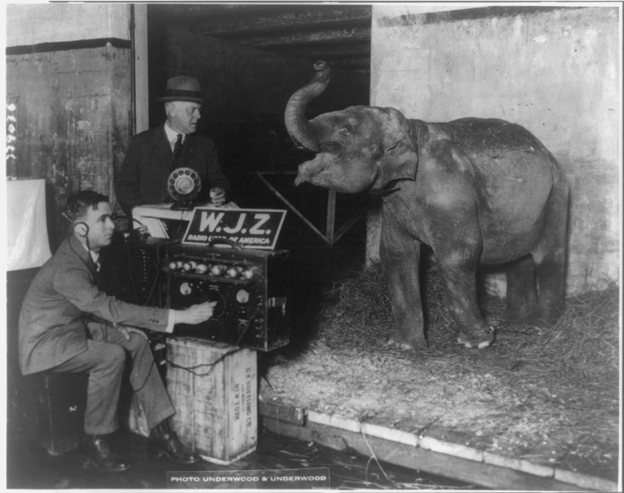 Circus broadcasted by radio for first time