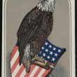 Primary Source Spotlight: American Eagle
