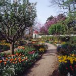 Primary Source Spotlight: Spring