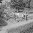 Children's school victory gardens